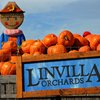 Linvilla Orchards