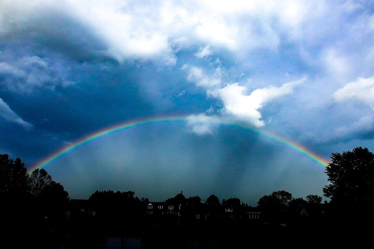 Rainbow Diefenderfer