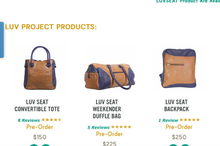Southwest Airlines Seat Bags