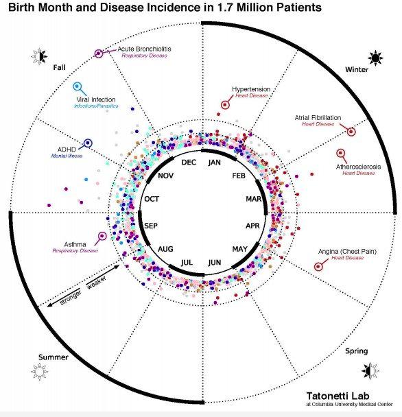 Birth Month & Health Graphic