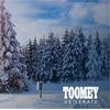 Toomey Snowscape