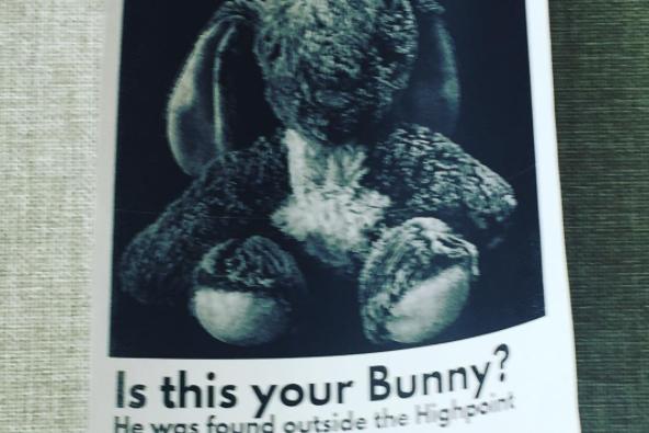 Found Stuffed Bunny