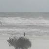 Hurricane Michael stream 1