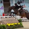 Devon Horse Show canceled