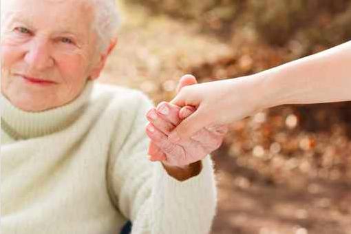 121115_Seniors