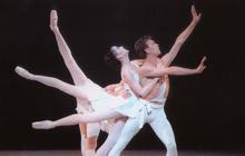 Limited - PA Ballet Stravinsky 2019