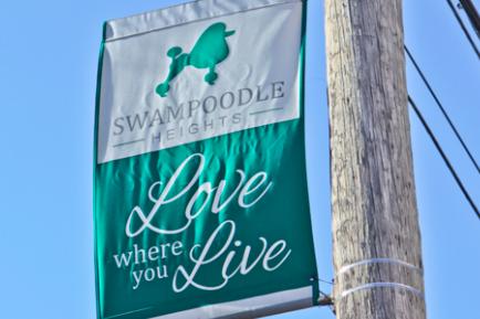 030615_Swampoodle