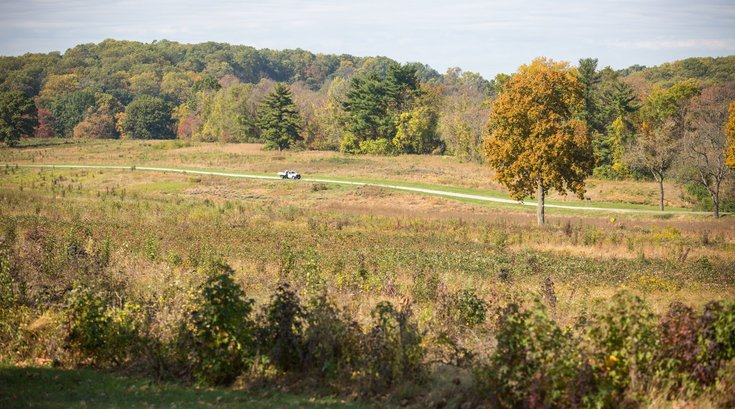Valley Forge national park invasive species