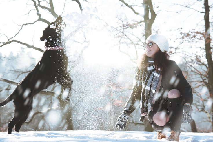Person playing with dog in snow