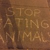 Vegan message