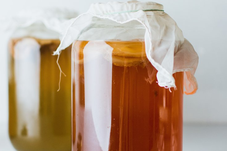 Bacteria gut health food allergies