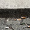 Philly Tobacco permits suspended