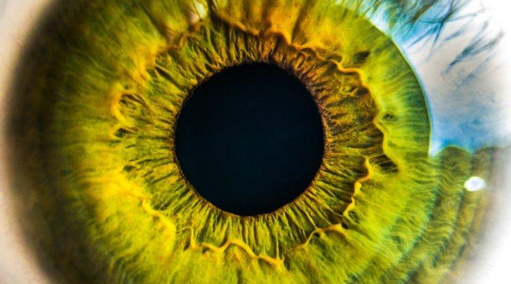 eyeball pexels