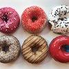 PHISH federal donuts