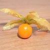 golden berries superfood flickr