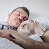 Naps may reduce risk of stroke, heart attacks
