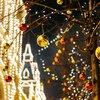 holiday lights app kane