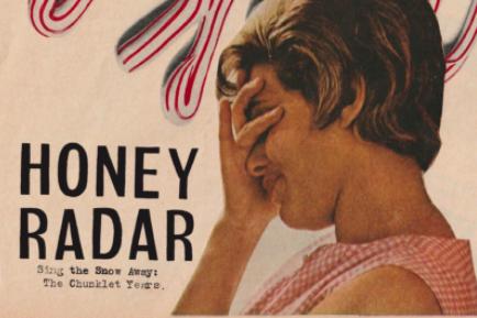 honey radar album art