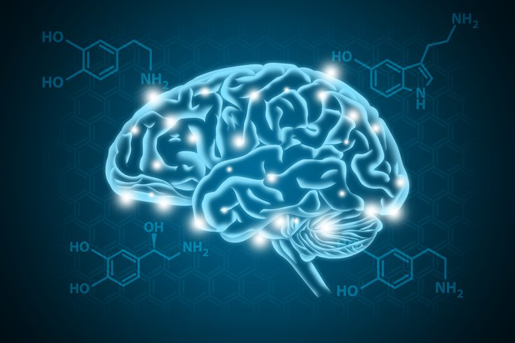 Purchased - Human Brain illustration with biochemical concept in background