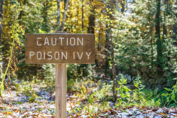 Purchased - Poison Ivy caution sign