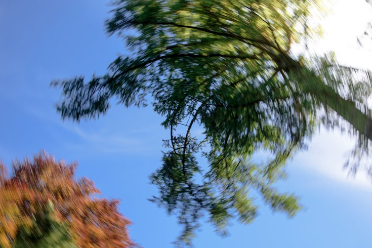 Motion blur sky looking up stock photo