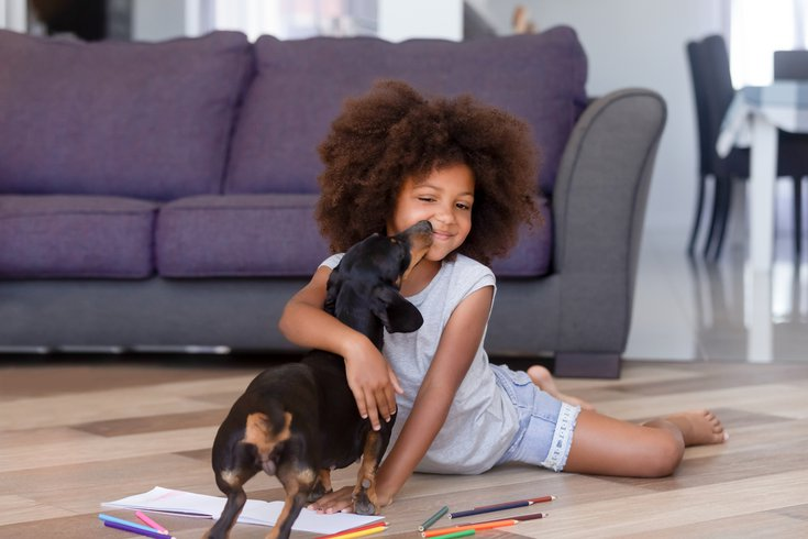 Purchased - Little girl playing with a puppy on floor