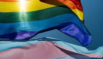 Purchased - Pride Flag waving