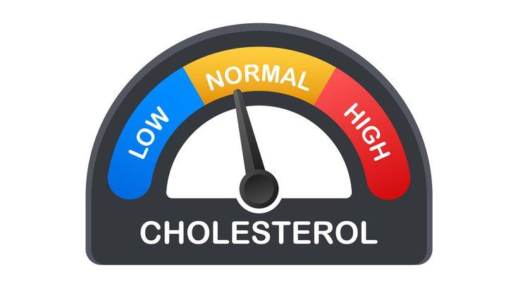 Purchased - Cholesterol meter