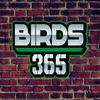 Limited - JAKIB Media -Birds 365