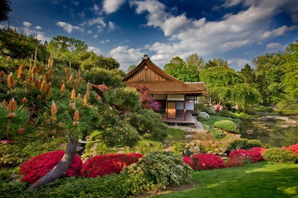 Japanese Tea House and Garden