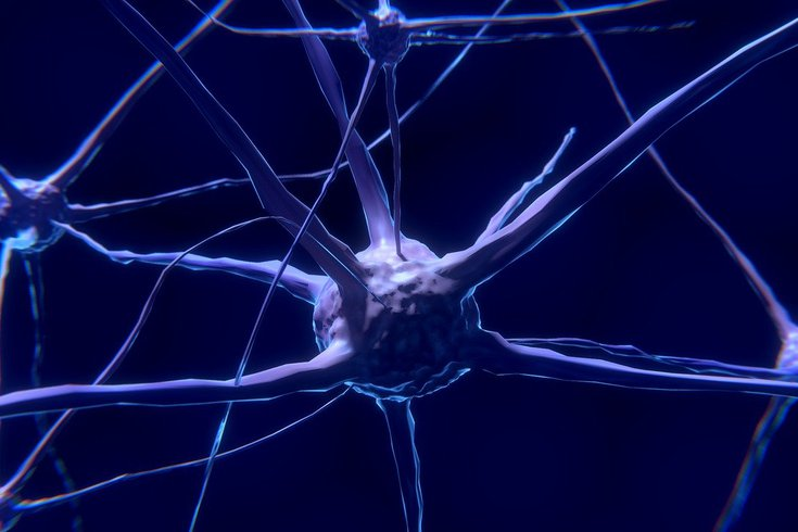 Nerve damage in Alzheimer's