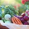 organic-food-prevents-cancer-pexels