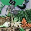 organic produce unsplash