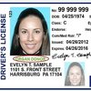 Pennsylvania driver's license