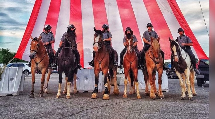 Pennsylvania State Police Horses