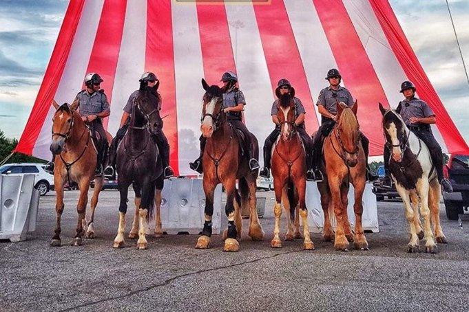 Pennsylvania State Police Horses