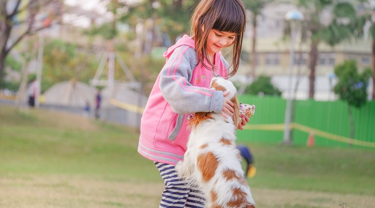 Link between having a pet dog in childhood and developing schizophrenia