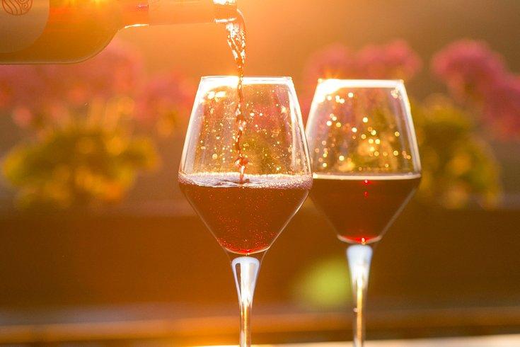 red wine with vineyard behind