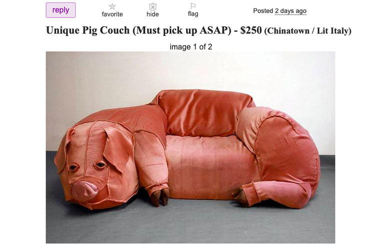 pig couch craigslist ad
