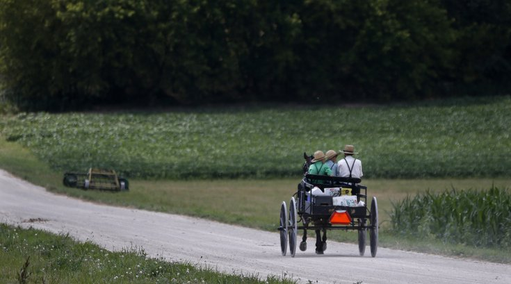 Amish Buggy Logging crash