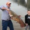 Flathead catfish record