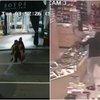 Boyds robbery