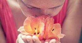 COVID-19 smell tastes symptom