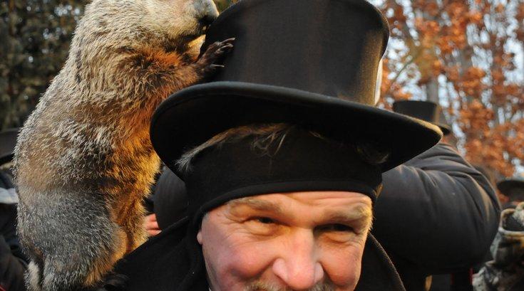 Groundhog top hat