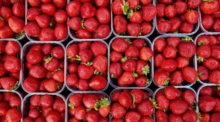 Strawberry Festival at Peddler's Village