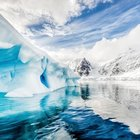 Limited - Guided Adventure to Antarctica