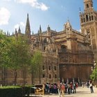 Limited - Seville Spain